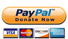 donate-now-paypal